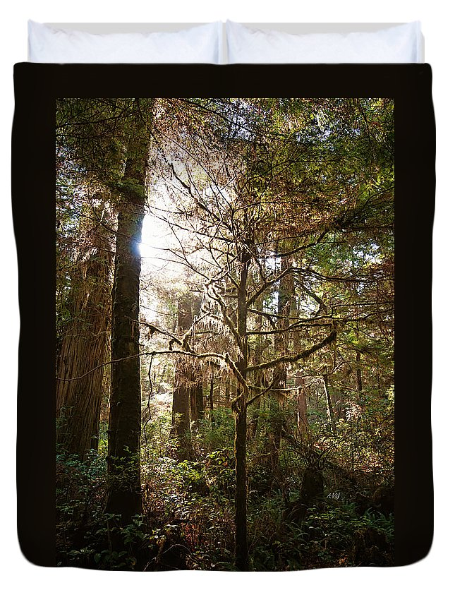 Rain Forest Duvet Cover featuring the photograph Save The Rain Forests by Allan Van Gasbeck