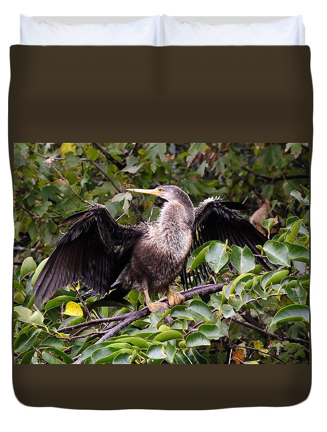 Nature Duvet Cover featuring the photograph Showoff by Peggy King