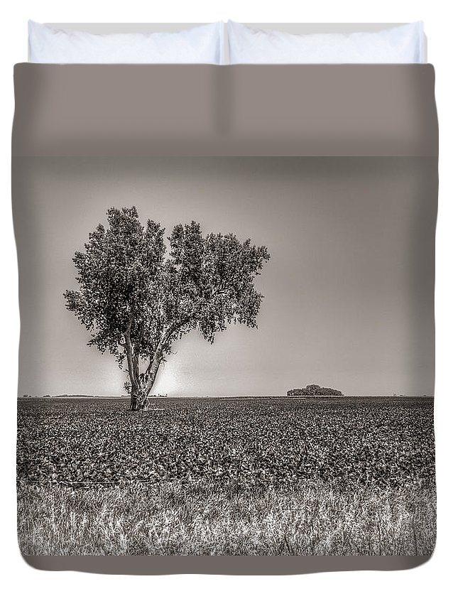 South Dakota Duvet Cover featuring the photograph Single Tree In The Bean Field by M Dale