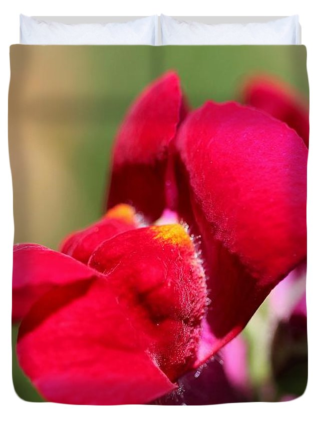 Snapdragon Duvet Cover featuring the photograph Snapdragon Named Red Chimes by J McCombie