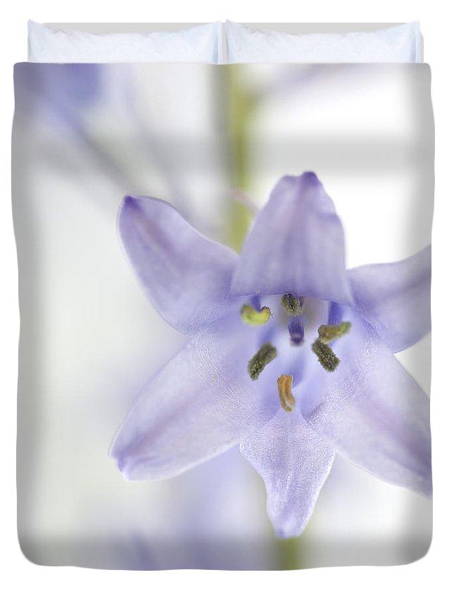 Bluebell Duvet Covers