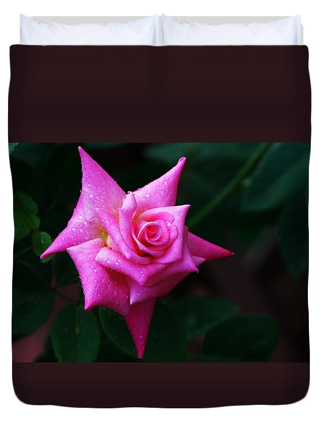 Rose Duvet Cover featuring the photograph Starbright by Doug Norkum