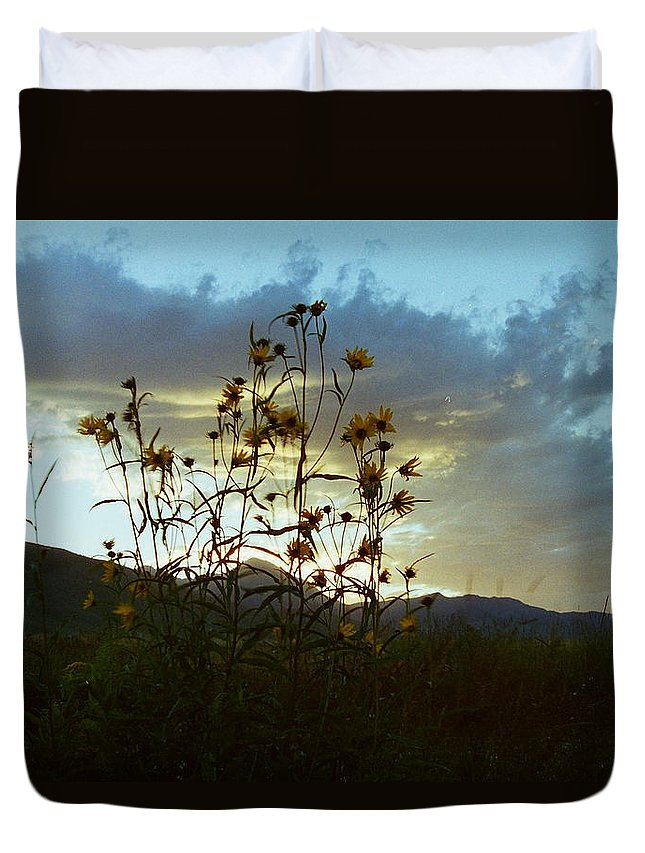Sunflower Duvet Cover featuring the photograph Sunflowers At Sunset by Mike Wheeler