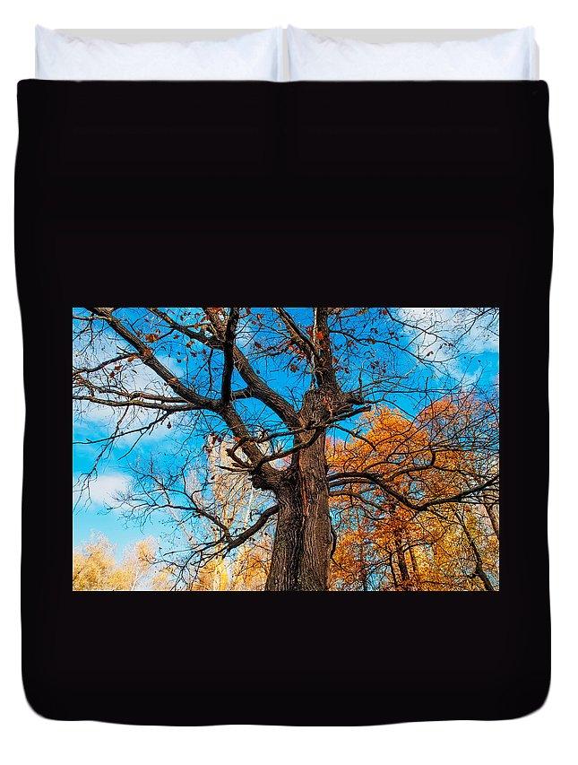 Jenny Rainbow Fine Art Photography Duvet Cover featuring the photograph Texture Of The Bark. Old Oak Tree by Jenny Rainbow