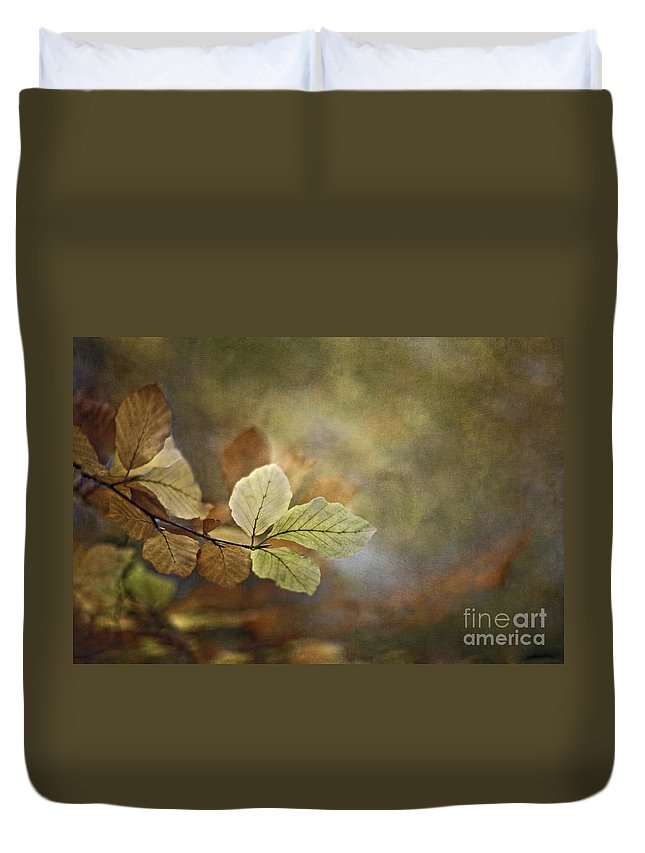 Autumn Duvet Cover featuring the photograph The Beauty Of The Common by Maria Ismanah Schulze-Vorberg