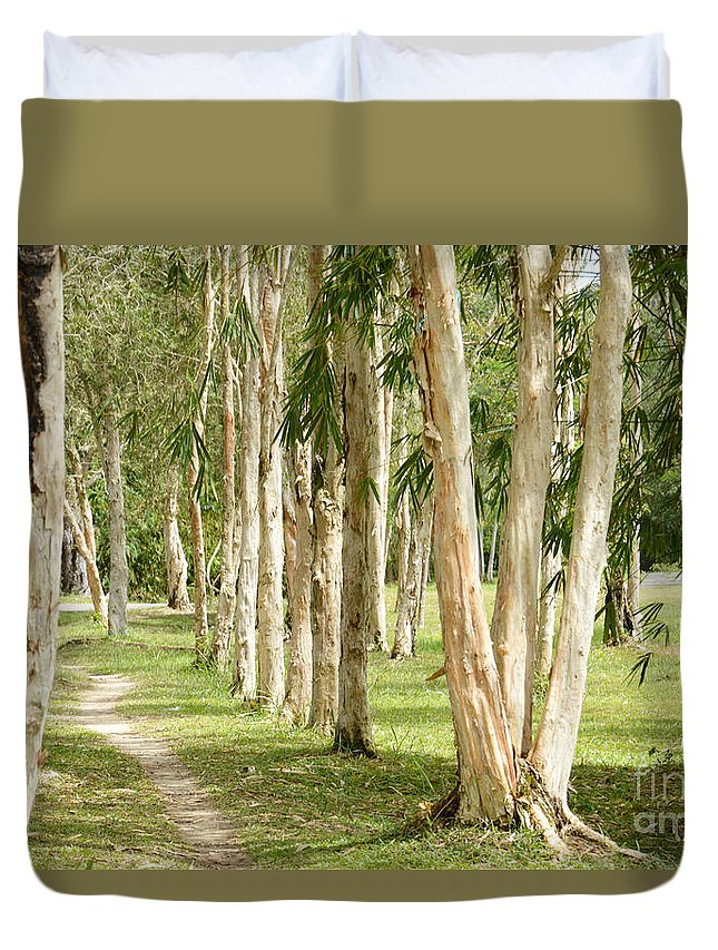 Forest Duvet Cover featuring the photograph The Path Between The Trees by Antoni Halim