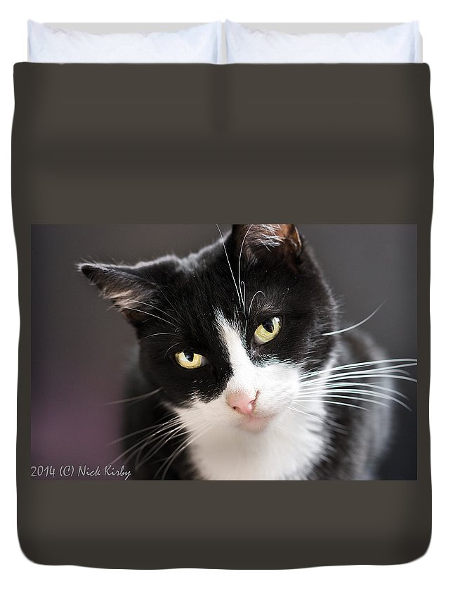 Cat Duvet Cover featuring the photograph Tiggles by Nick Kirby