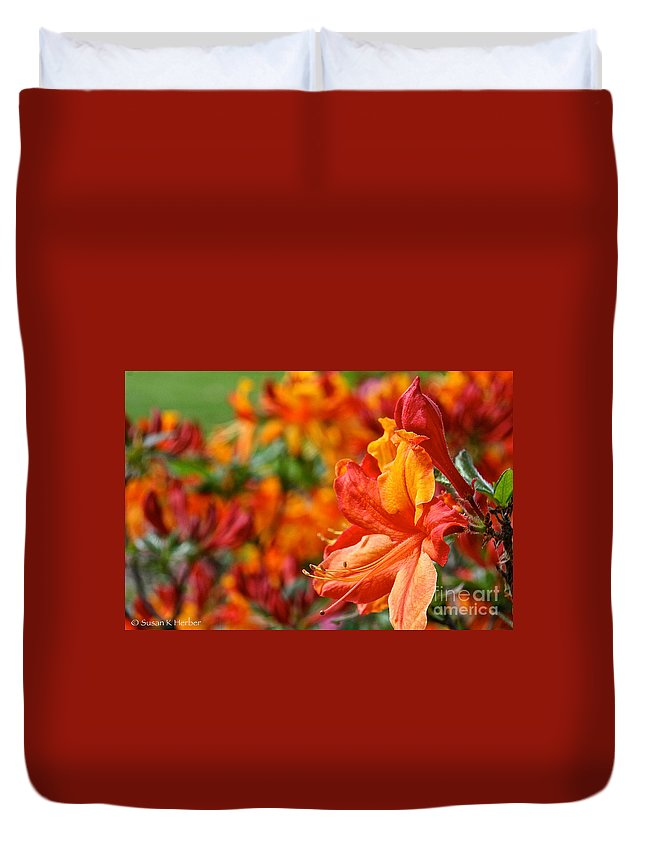 Flower Duvet Cover featuring the photograph Torch by Susan Herber