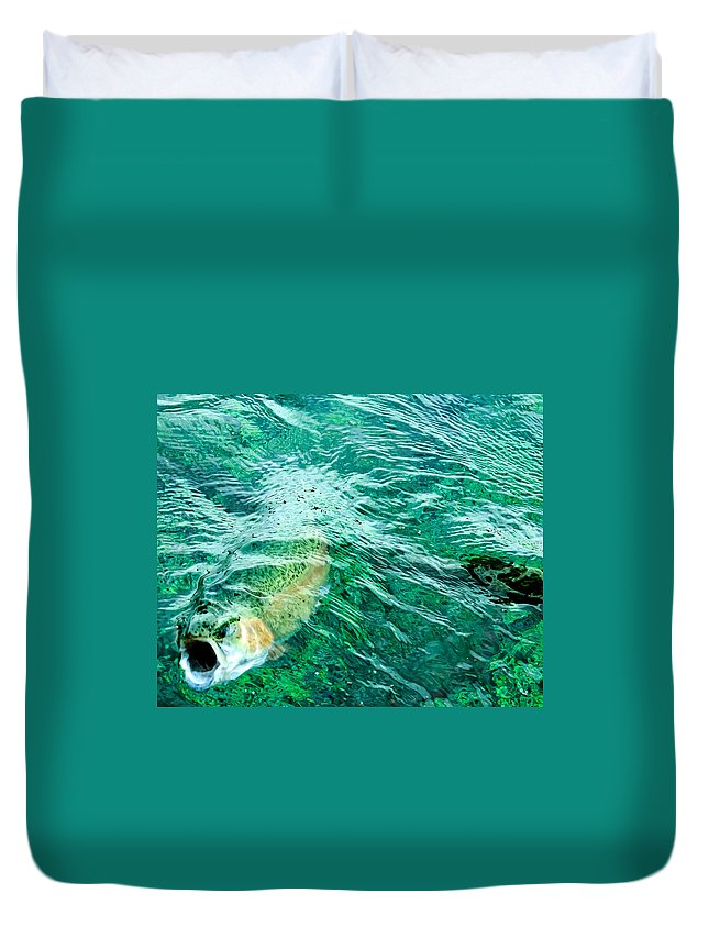 Rainbow Trout Duvet Cover featuring the photograph Catching Flies by John Lee
