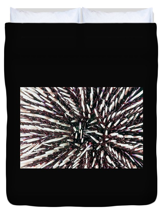 Echinoidea Duvet Cover featuring the digital art Urchin Spines by Roy Pedersen