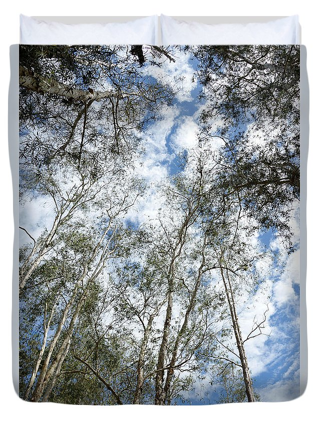 Nature Duvet Cover featuring the photograph View Of Towering Trees by Antoni Halim