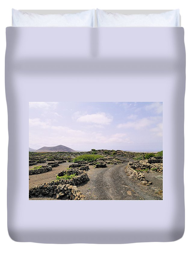 Vineyard Duvet Cover featuring the photograph Vineyard On Lanzarote by Karol Kozlowski