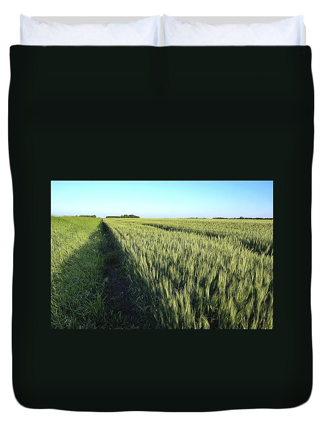 Donald Erickson Duvet Cover featuring the photograph Wheat Field by Donald Erickson