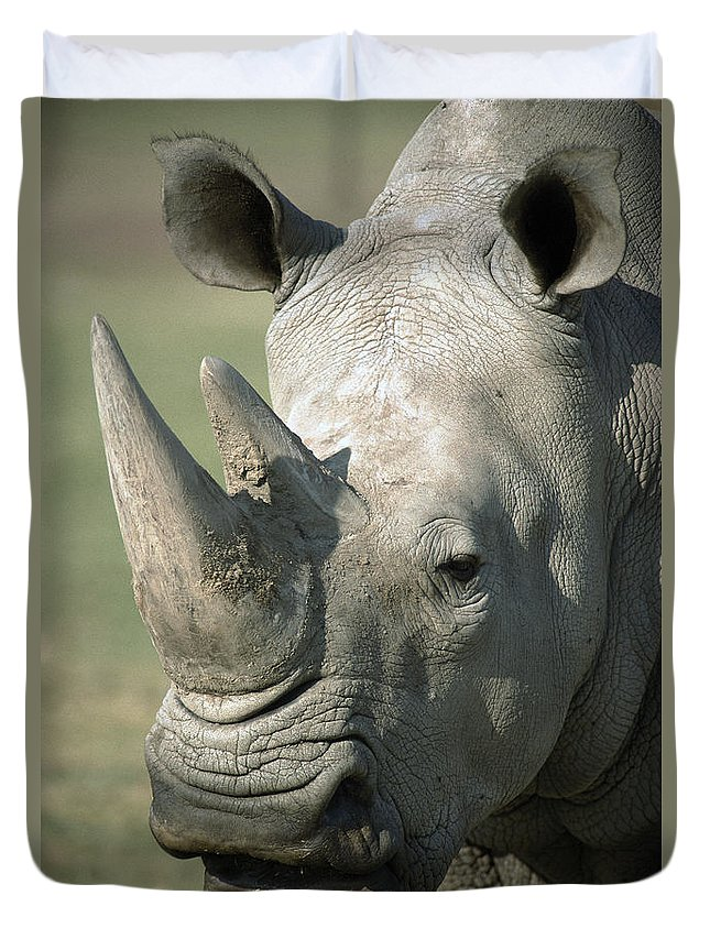 Feb0514 Duvet Cover featuring the photograph White Rhinoceros Portrait by San Diego Zoo