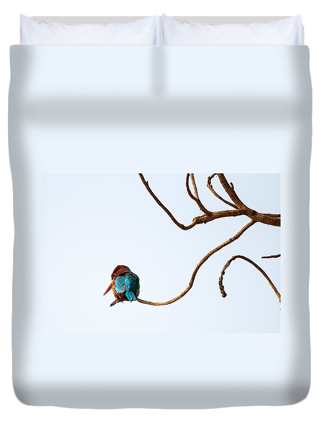 Smyrna Kingfisher Duvet Cover featuring the photograph White-throated Kingfisher by Gaurav Singh