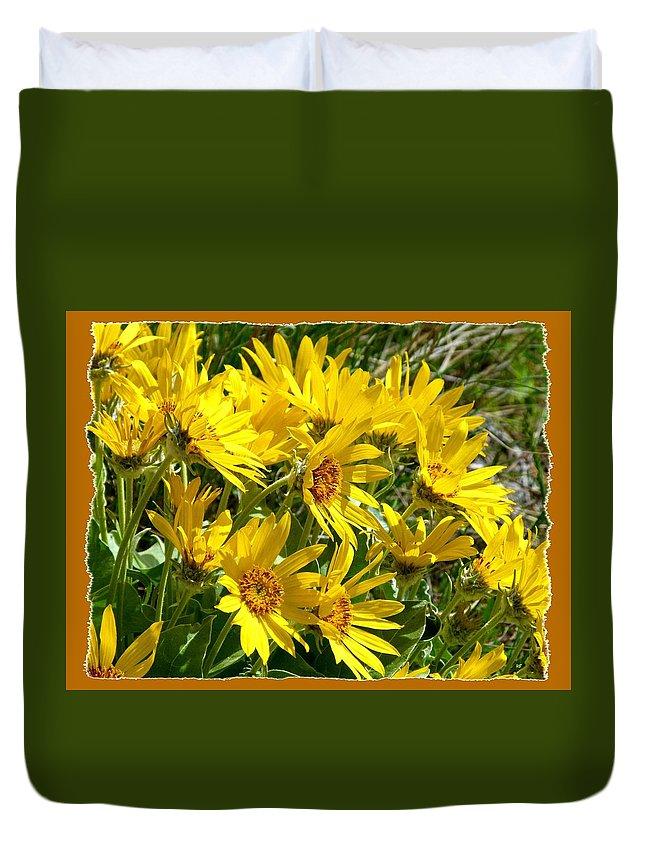 Wild Okanagan Sunflowers Duvet Cover featuring the photograph Wild Okanagan Sunflowers by Will Borden