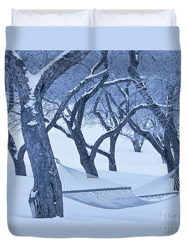 Winter Duvet Cover featuring the photograph Winter Dreams by Alan L Graham