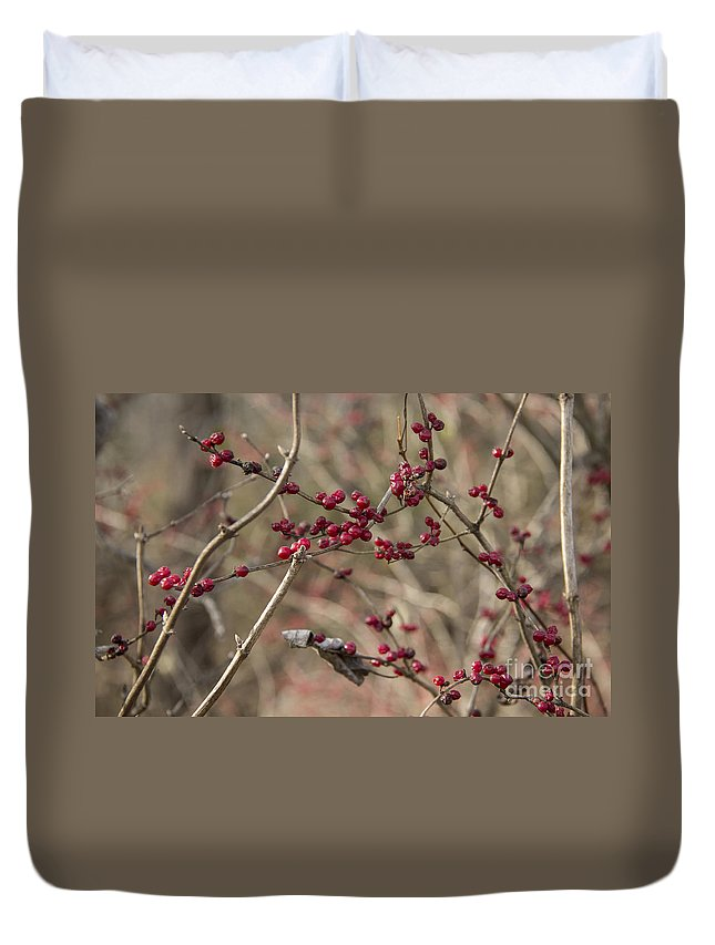 Winterberry Duvet Cover featuring the photograph Winterberries by Teresa Mucha