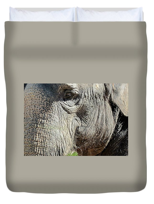 Elephant Duvet Cover featuring the photograph Wise One,elephant by Sandra Reeves