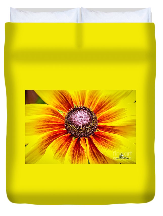 Flower Duvet Cover featuring the photograph Yellow Daisy by Grace Grogan