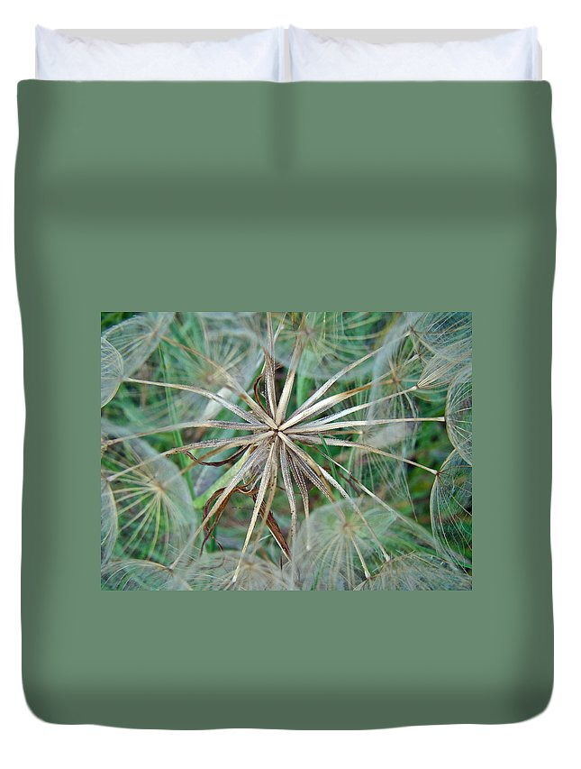Salsify Duvet Cover featuring the photograph Yellow Goat's Beard Wildflower Seed Head - Tragopogon Dubius by Mother Nature