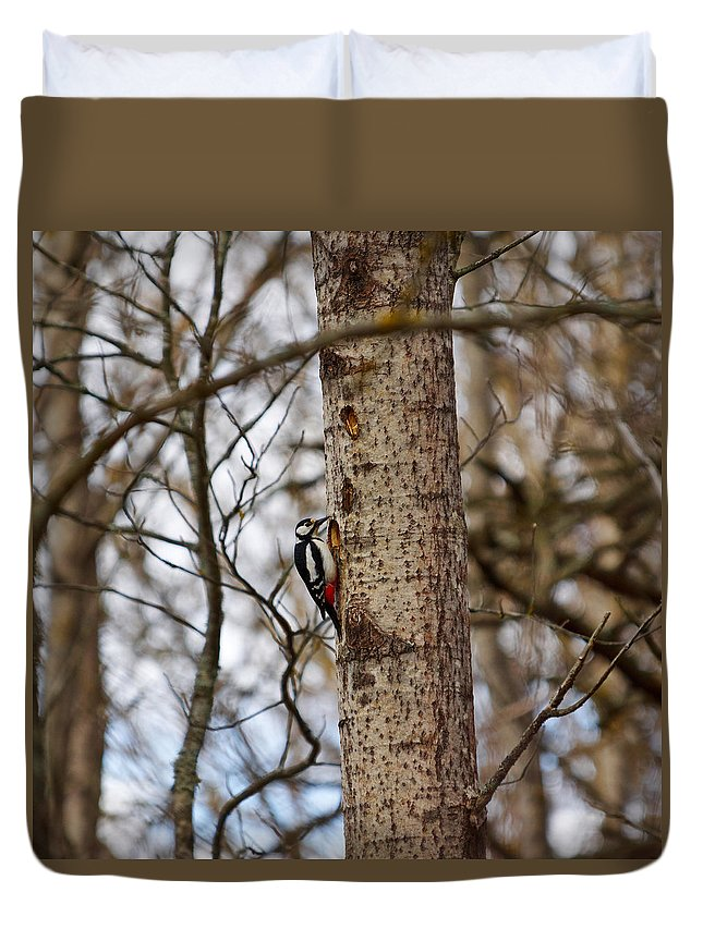Lehto Duvet Cover featuring the photograph Great Spotted Woodpecker by Jouko Lehto