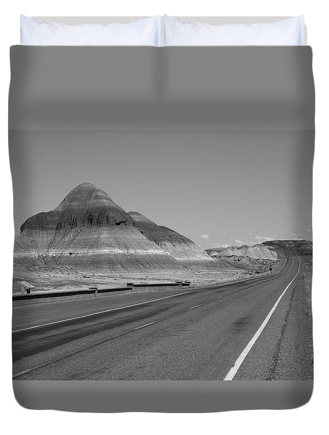 66 Duvet Cover featuring the photograph Painted Desert by Frank Romeo
