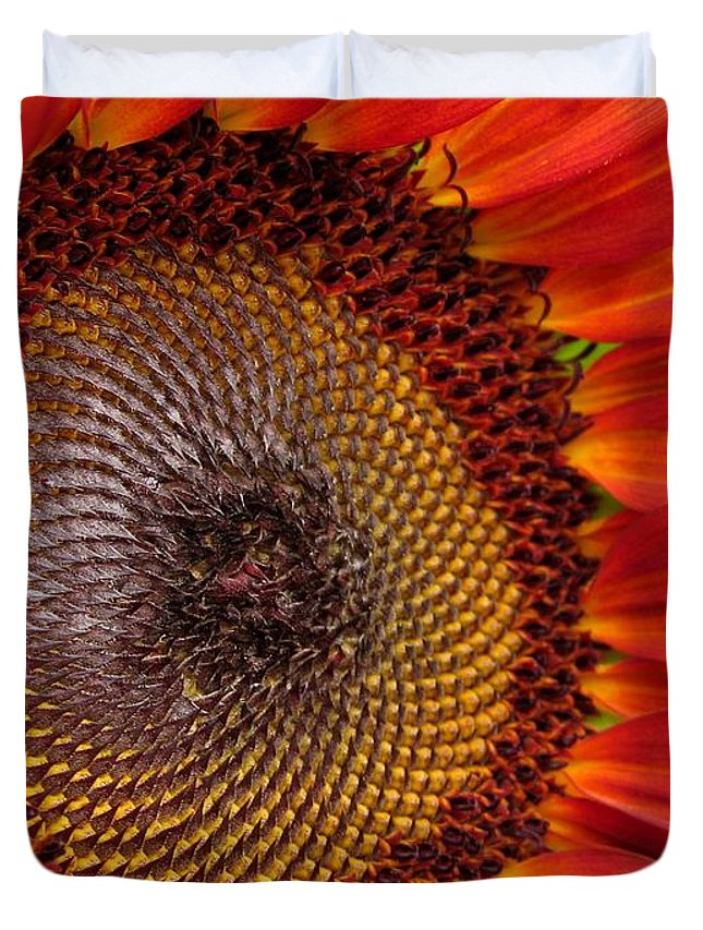 Mccombie Duvet Cover featuring the photograph Sunflower From The Color Fashion Mix by J McCombie