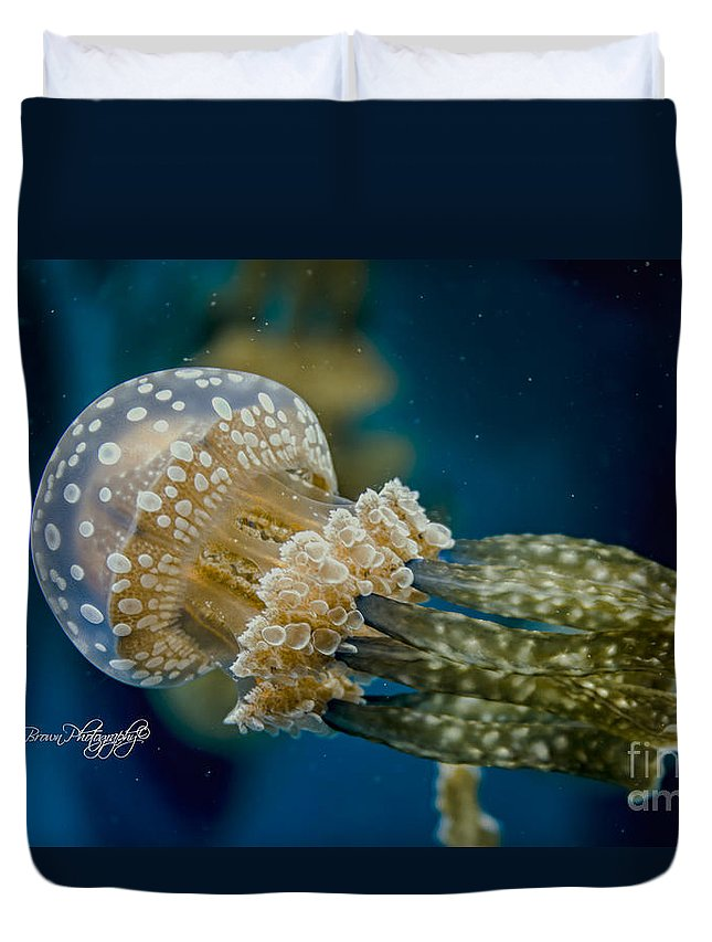 Jelly Fish Duvet Cover featuring the photograph 1031 by Rrea Brown