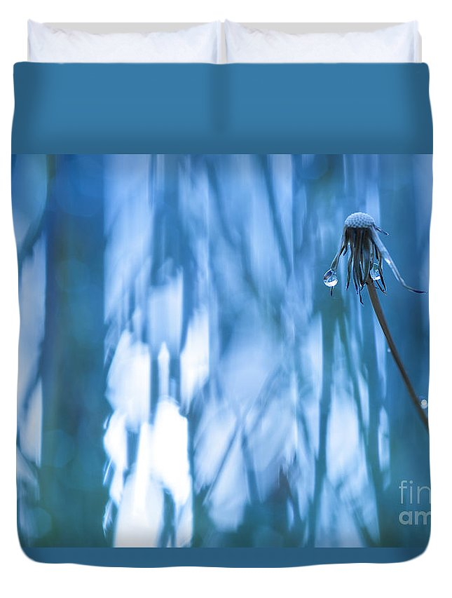 Dandelion Duvet Cover featuring the photograph Dandelion Close-up View Backlit by Jim Corwin