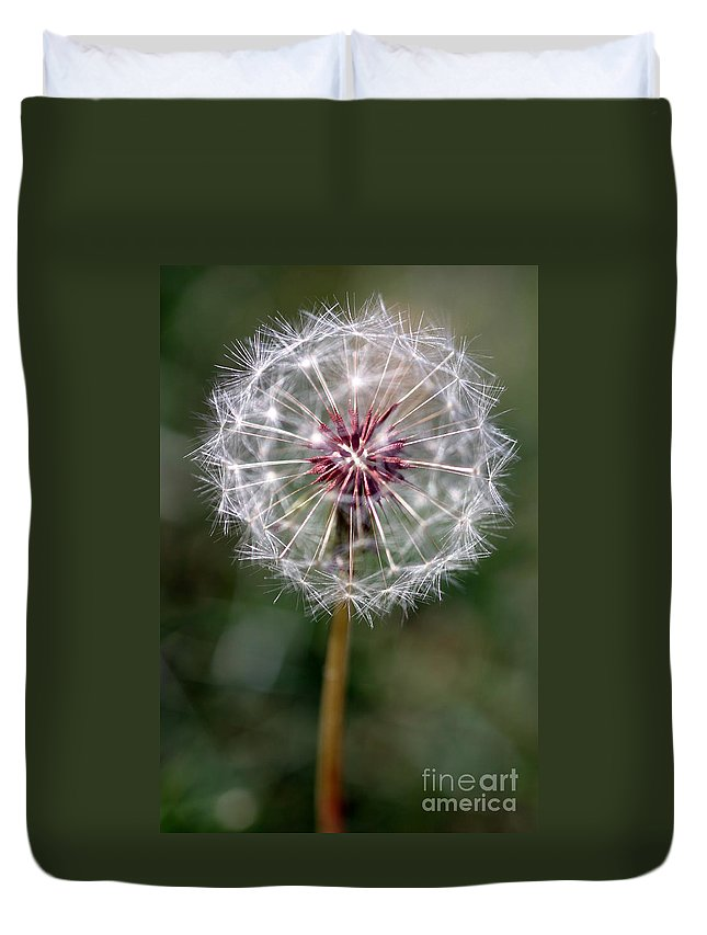 Abstract Duvet Cover featuring the photograph Dandelion Seed Head by Henrik Lehnerer