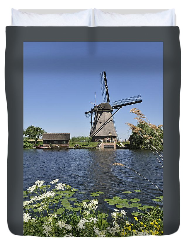 Thatch Duvet Cover featuring the photograph 110714p051 by Arterra Picture Library