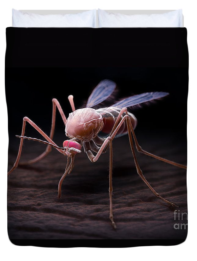 3d Visualisation Duvet Cover featuring the photograph Anopheles Mosquito by Science Picture Co