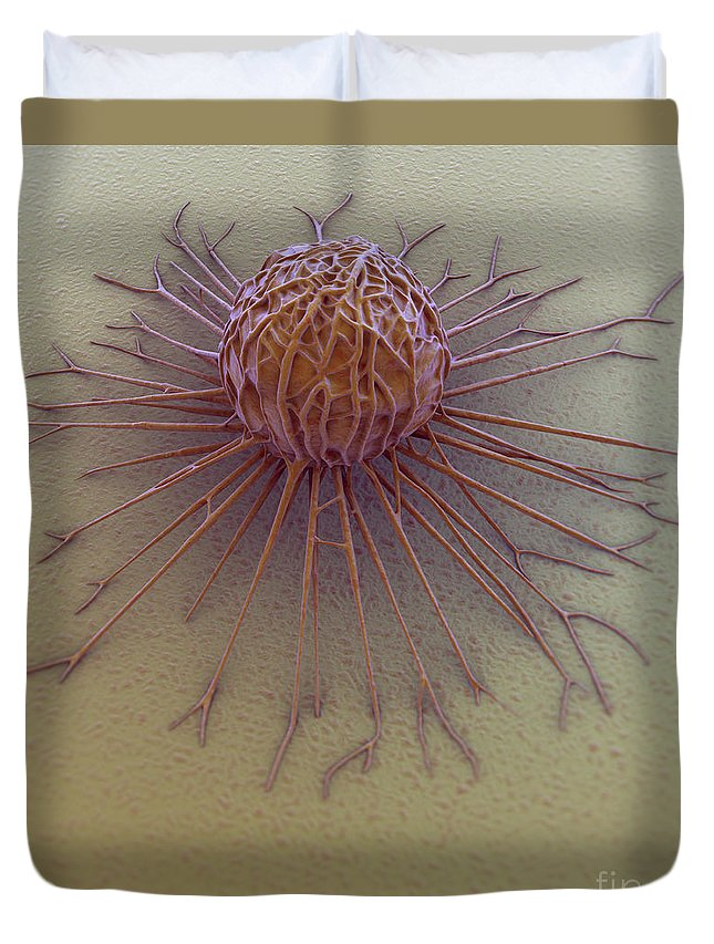 Cells Duvet Cover featuring the photograph Cancer Cell by Science Picture Co