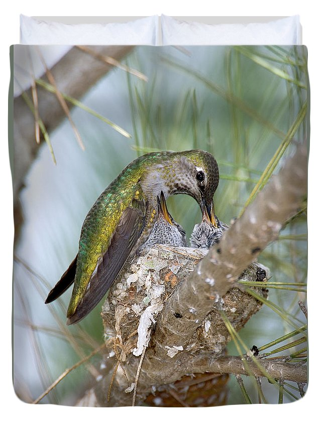 Vertical Duvet Cover featuring the photograph Annas Hummingbird by Anthony Mercieca