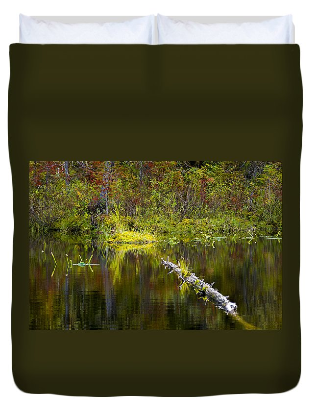 Priest Lake Duvet Cover featuring the photograph 131005b-052 Forest Marsh 2 by Albert Seger