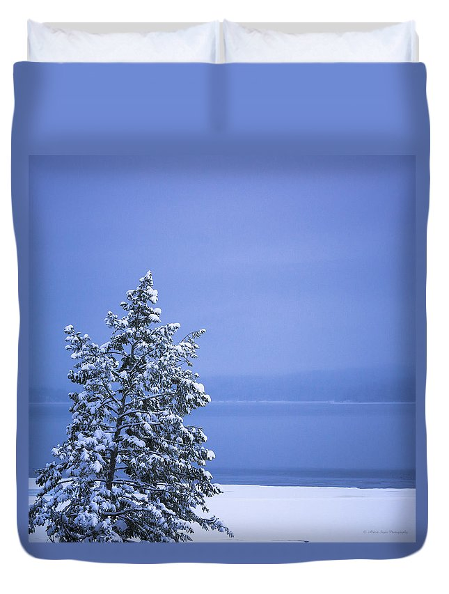 Blue Duvet Cover featuring the photograph 140303a-12 Winter Blues by Albert Seger