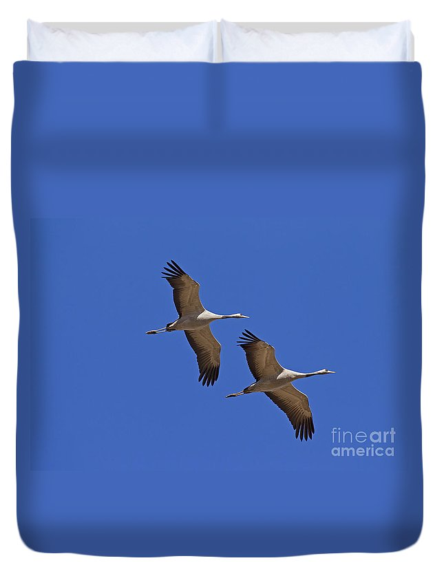 Two Duvet Cover featuring the photograph 140314p060 by Arterra Picture Library