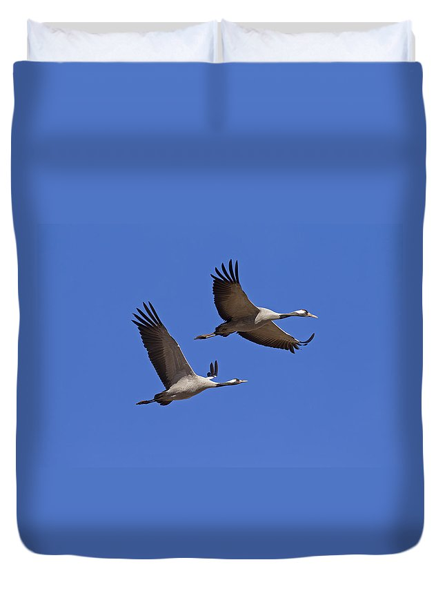 Two Duvet Cover featuring the photograph 140314p062 by Arterra Picture Library