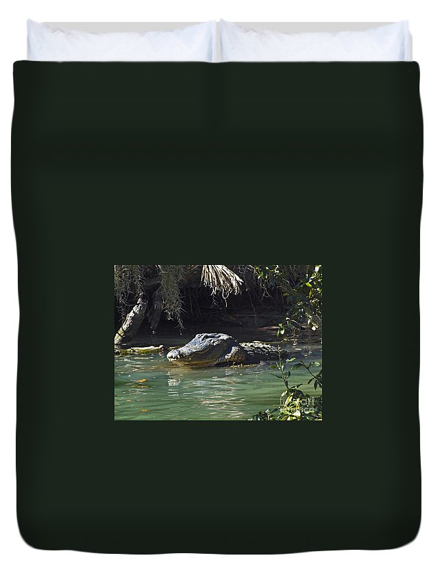 America Duvet Cover featuring the photograph American Alligator by Howard Stapleton