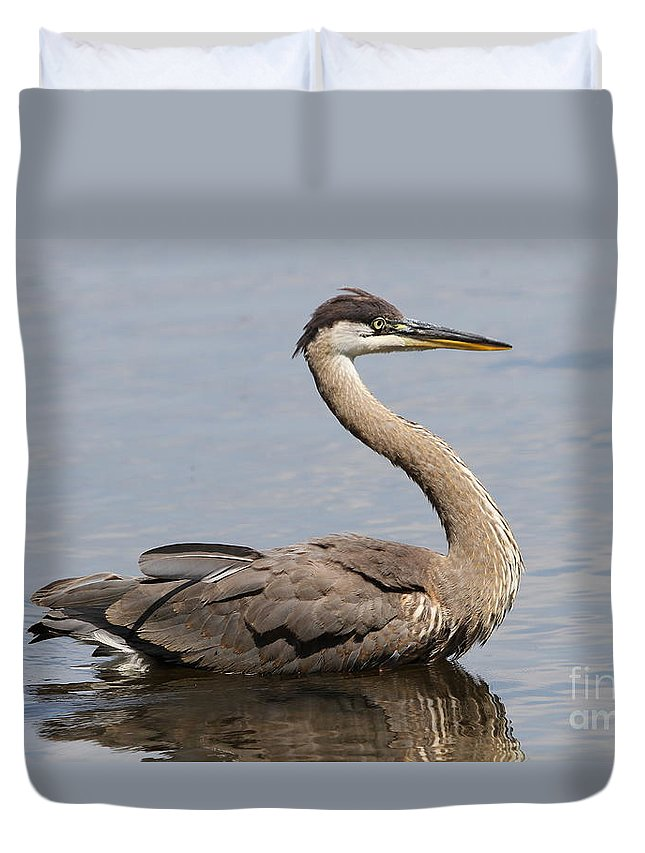 Great Blue Heron Duvet Cover featuring the photograph Great Blue Heron by Ken Keener