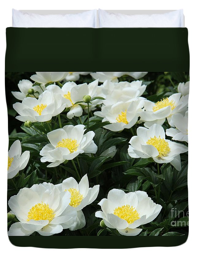 Peonies Duvet Cover featuring the photograph All Together by Christiane Schulze Art And Photography