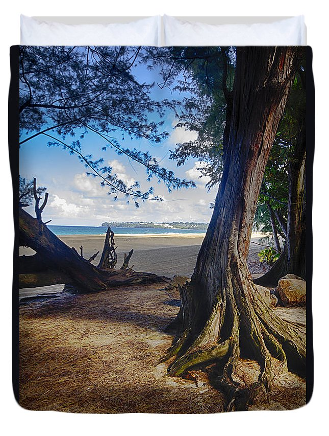 Trees Duvet Cover featuring the photograph Anchored by Douglas Barnard
