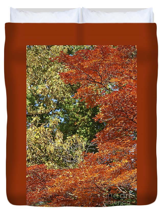 Germany Duvet Cover featuring the photograph autumn colours in Bavaria by Rudi Prott
