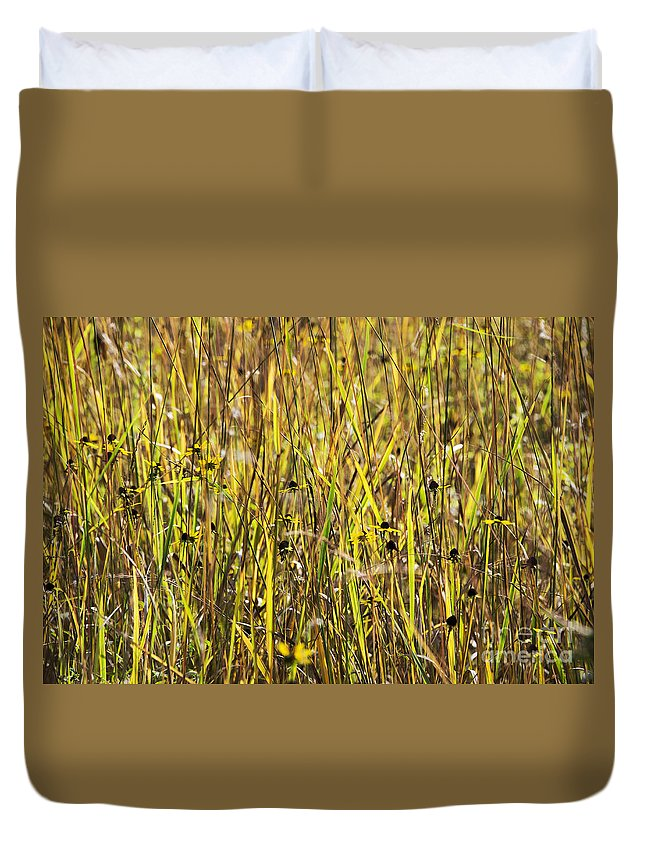 Asteraceae Duvet Cover featuring the photograph Autumn Meadow by John Greim