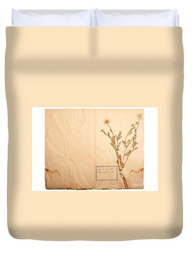 Flower Duvet Cover featuring the photograph Beautiful Dried Vintage Flowers by Jochen Schoenfeld