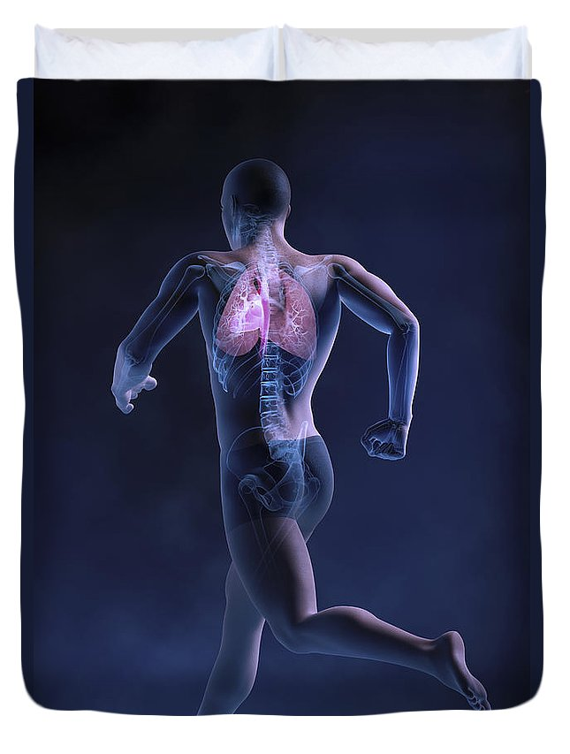 Male Duvet Cover featuring the photograph Cardiovascular Exercise by Science Picture Co
