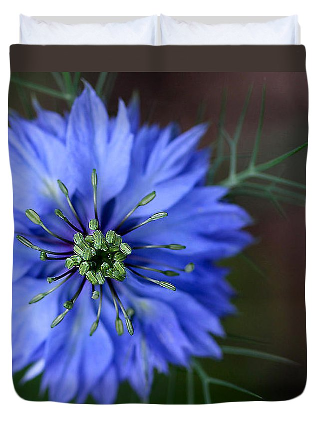 Blue Duvet Cover featuring the photograph Center Focus by Nadine Lewis
