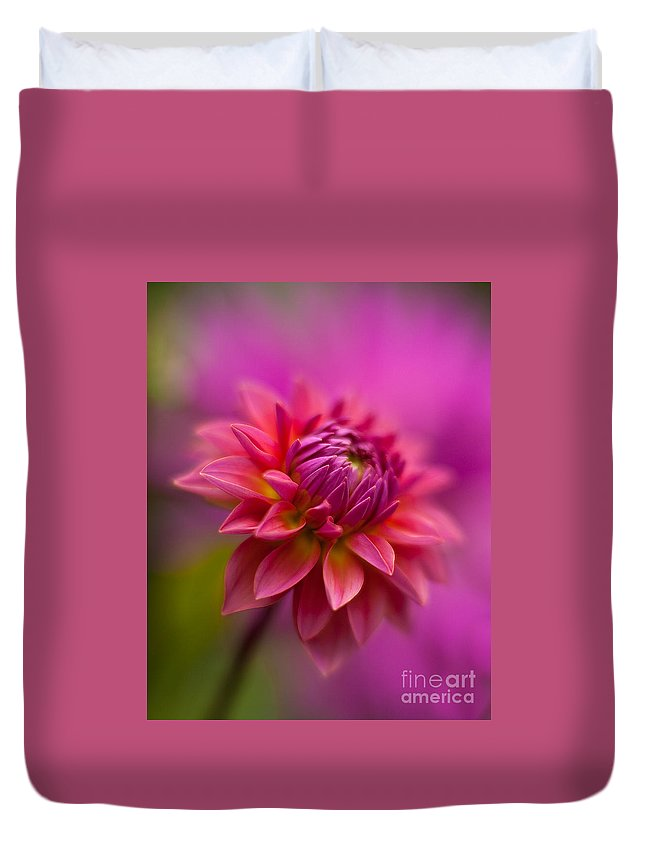 Dahlia Duvet Cover featuring the photograph Dahlia Burst by Mike Reid