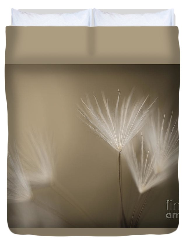 Dandelion Duvet Cover featuring the photograph Dandelion Close-up View Backlit by Jim Corwin